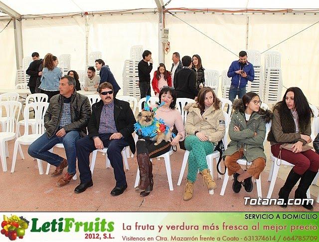 Concurso de disfraces de mascotas Carnaval de Totana - 1