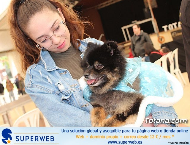 Concurso de disfraces de mascotas Carnaval de Totana - 12