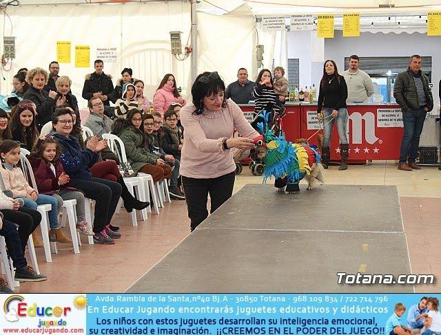Concurso de disfraces de mascotas Carnaval de Totana - 22