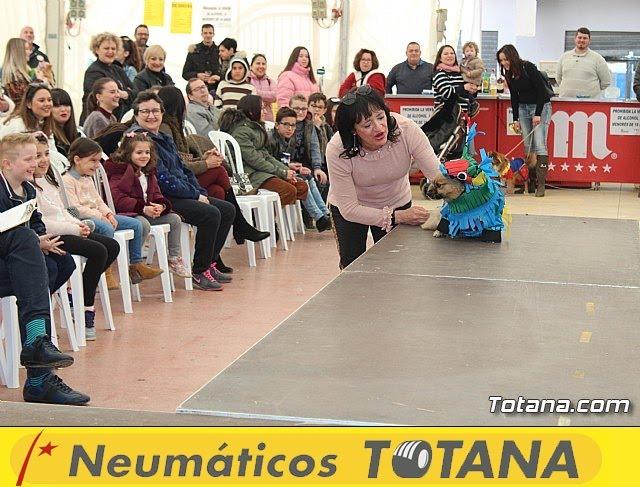 Concurso de disfraces de mascotas Carnaval de Totana - 23