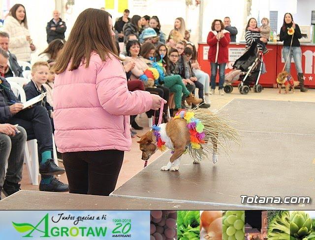 Concurso de disfraces de mascotas Carnaval de Totana - 25
