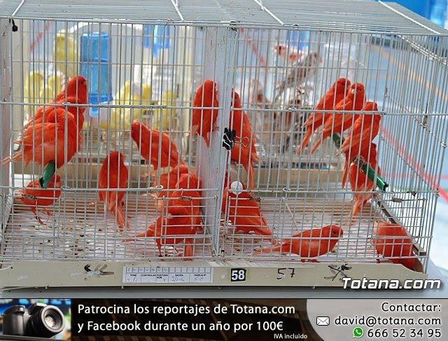 6º Campeonato Ornitológico Regional Murciano - 11