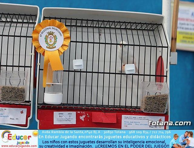 6º Campeonato Ornitológico Regional Murciano - 29