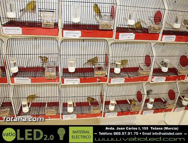 Exposición ornitológica