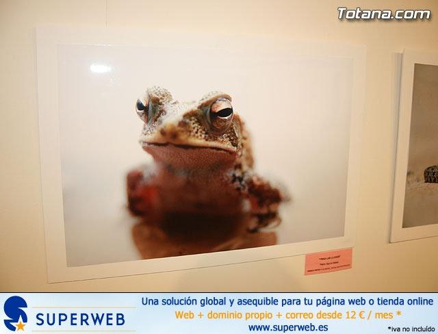 CrearteJoven 2008 - Fotografía y pintura - 26